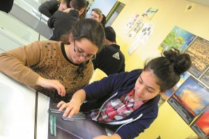 Collège Jules Vernes Le développement durable