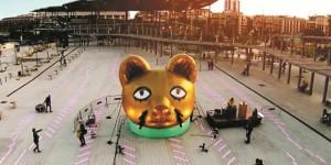 laser-cat-big