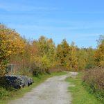 reserve-naturelle-pantegnies-pont-sur-sambre (1)