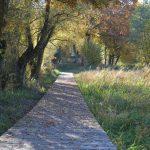 reserve-naturelle-pantegnies-pont-sur-sambre (3)