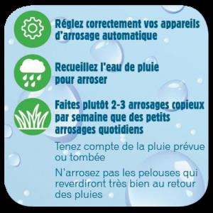 ecnomie-eau-jardin-2