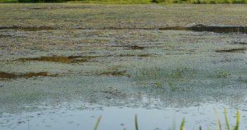 sécurité fermeture réserve naturelle Pantegnies